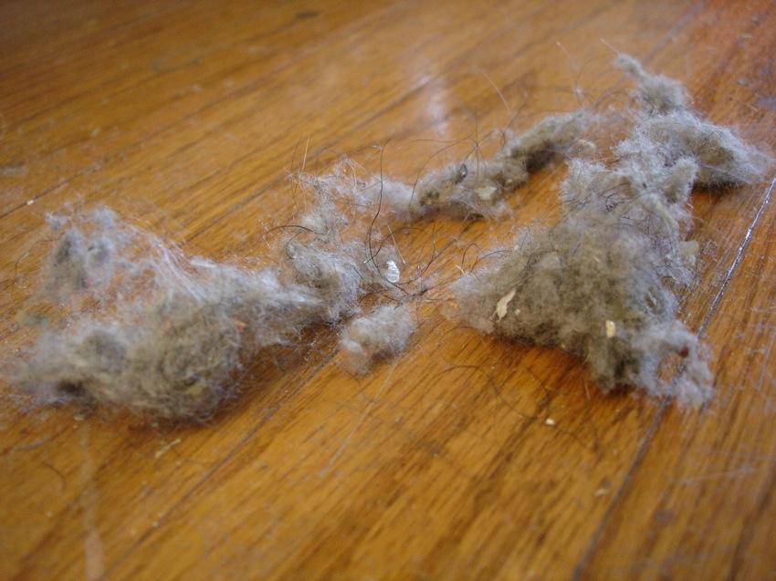 Come ridurre la polvere in casa