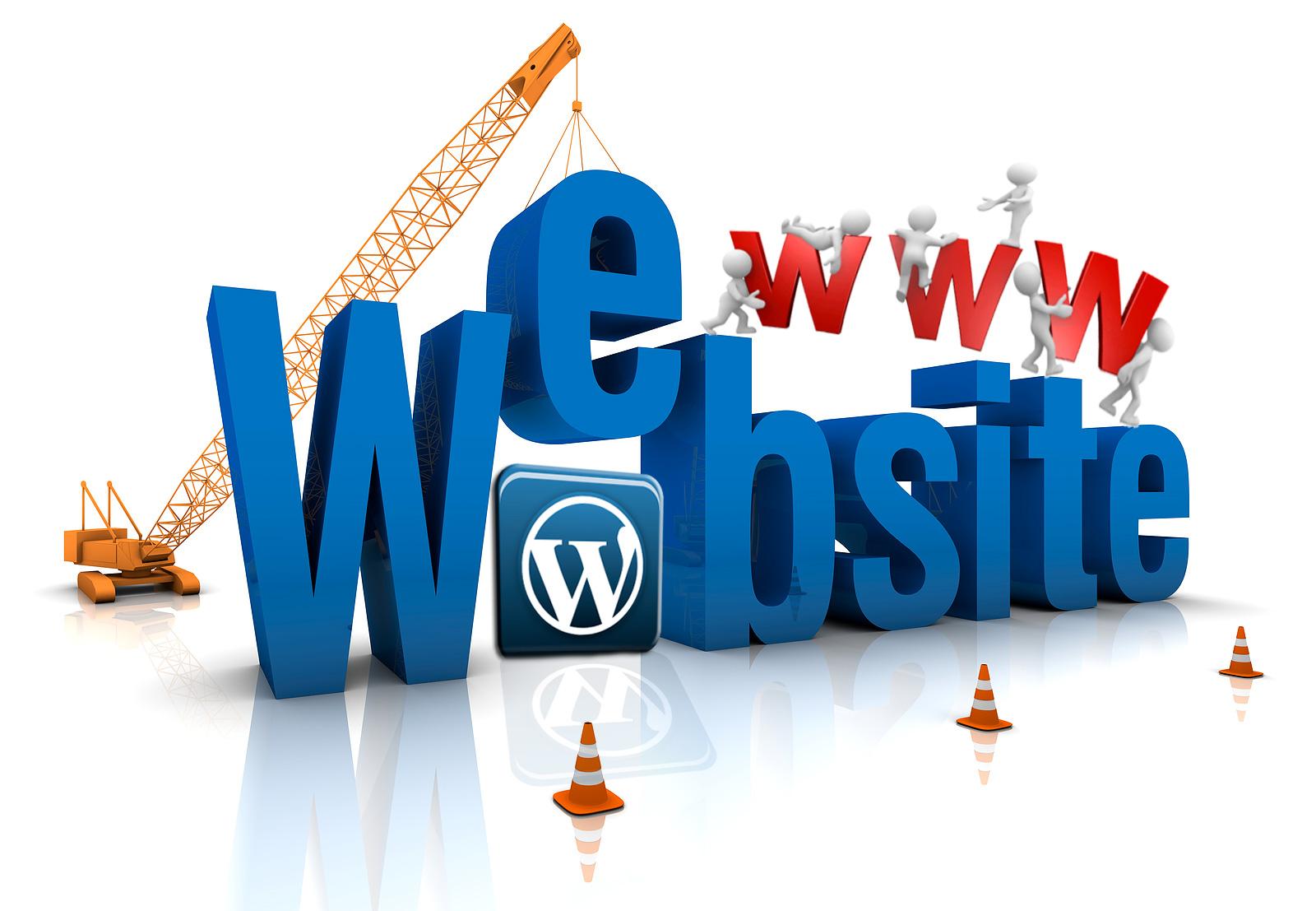 Realizzazione Siti Web Porto Viro