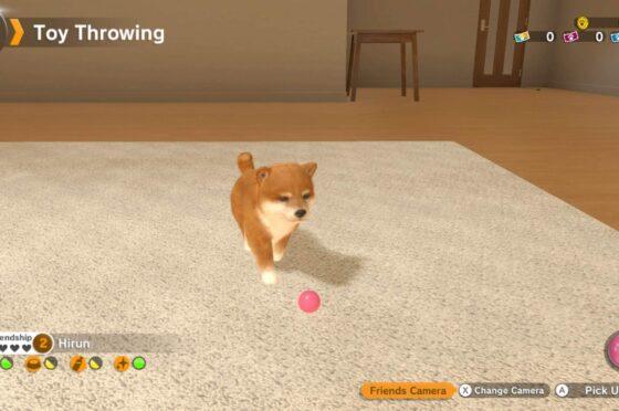Come giocare a Nintendogs Guida